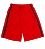 Nike: 'ARIZONA' Sided Navy Striped Shorts<BR>Red