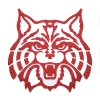 Temporary Tattoo: Arizona Wildcats - Glitter Red