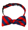 Bow Tie: Navy and Red Stripe