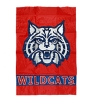 Image for Banner: Arizona Wildcats Home