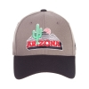 Cover Image for Zephyr: Arizona Cactus Valut ZClassic ZFIt Cap-Navy/Grey
