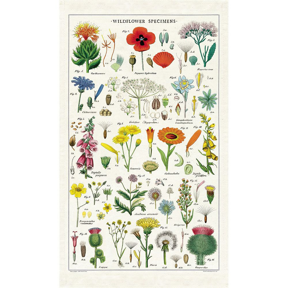 Image For Cavallini & Co. Wildflowers Tea Towel