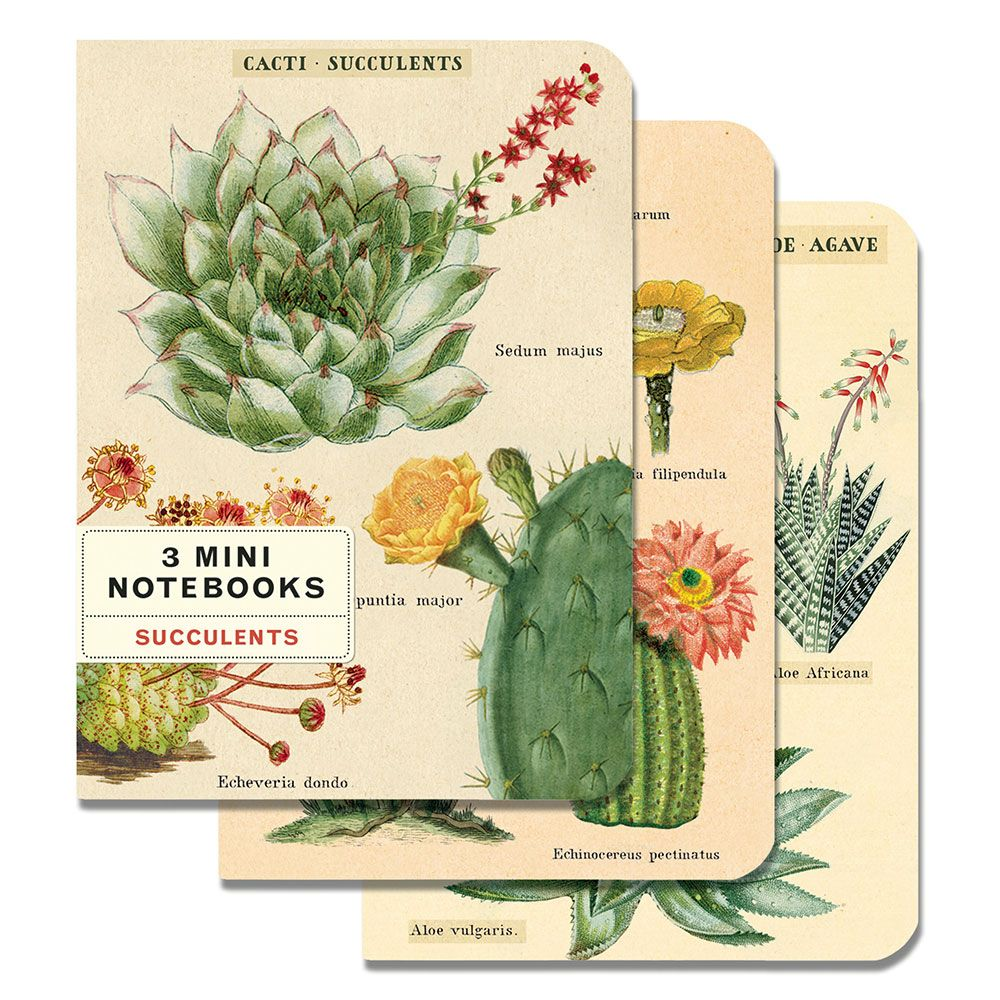 Image For Cavallini & Co. Succulents Mini Journals
