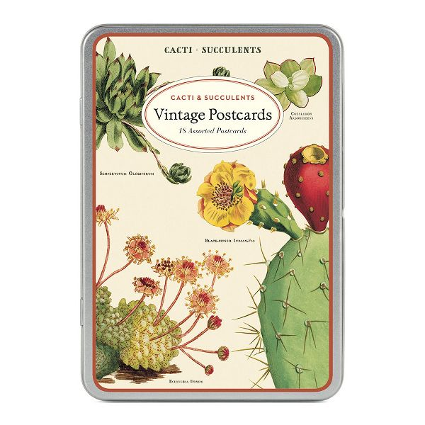 Image For Cavallini & Co. Succulents Carte Postale Postcard Set