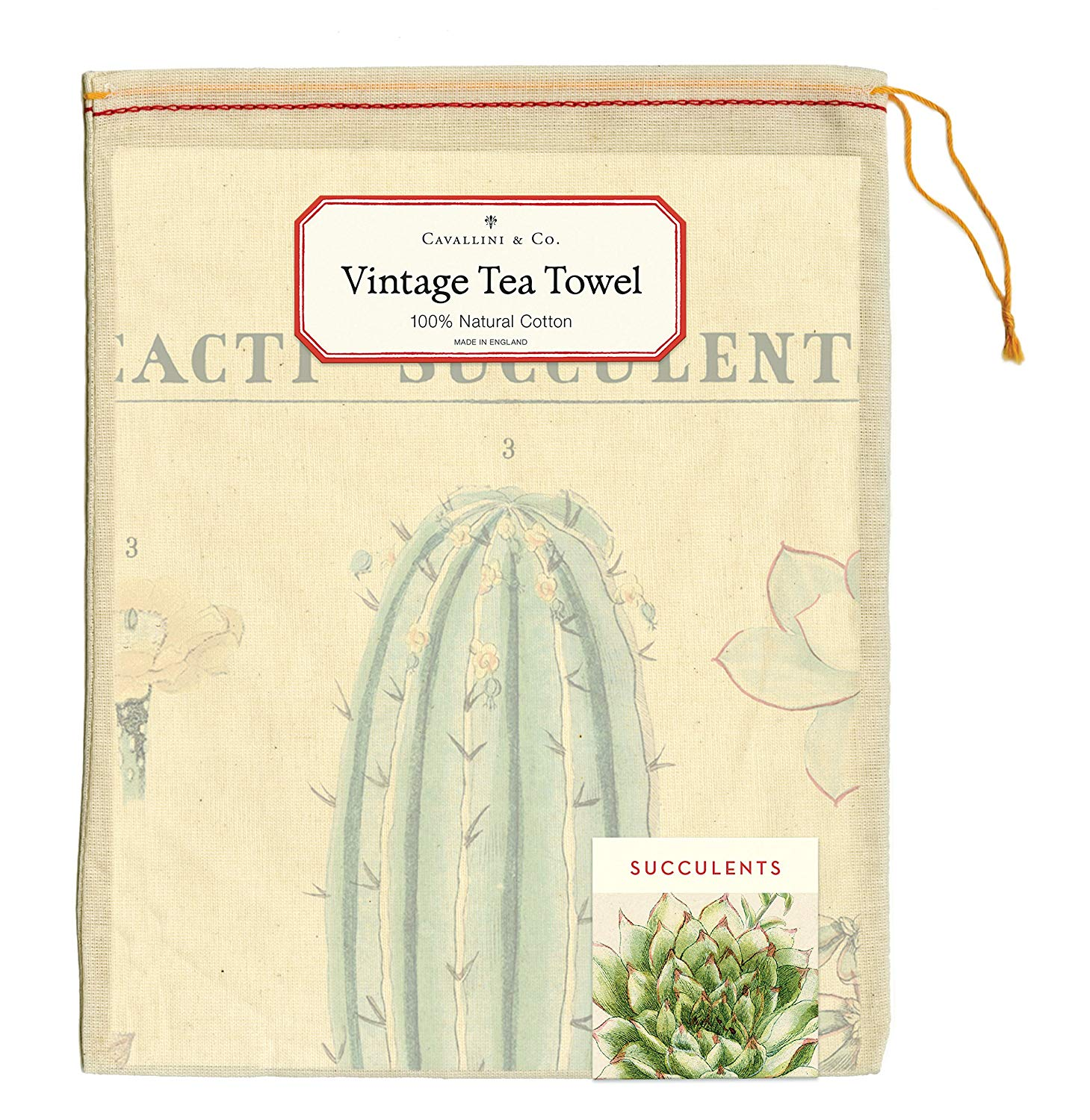 Image For Cavallini Papers & Co: Succulents Vintage Cotton Tea Towel