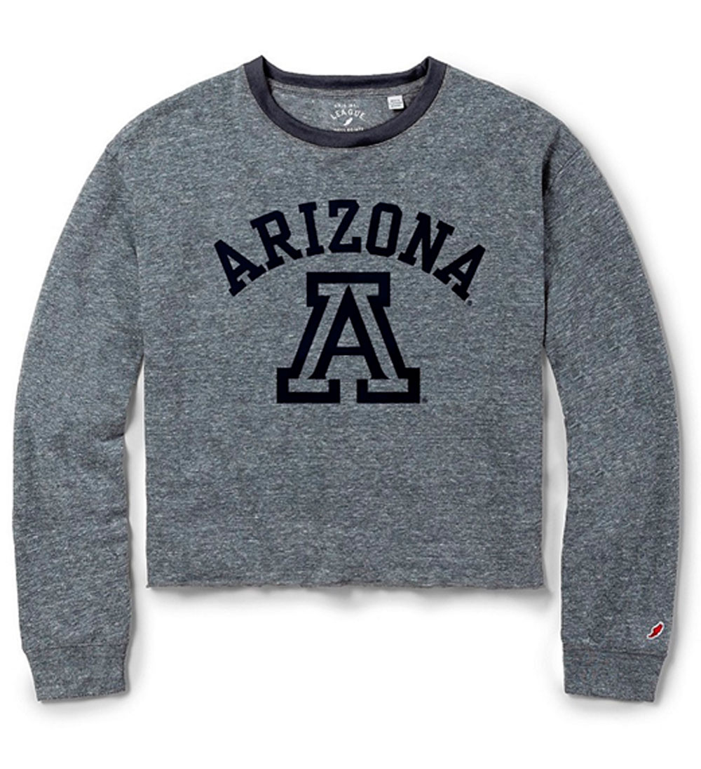 Image For League 91: Arizona Team Logo Intramural Longsleeve Crop Grey