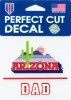 Cover Image for Decal: Arizona Vault Cactus DAD