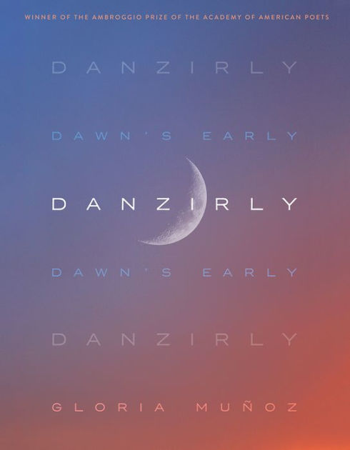 Cover Image For Danzirly